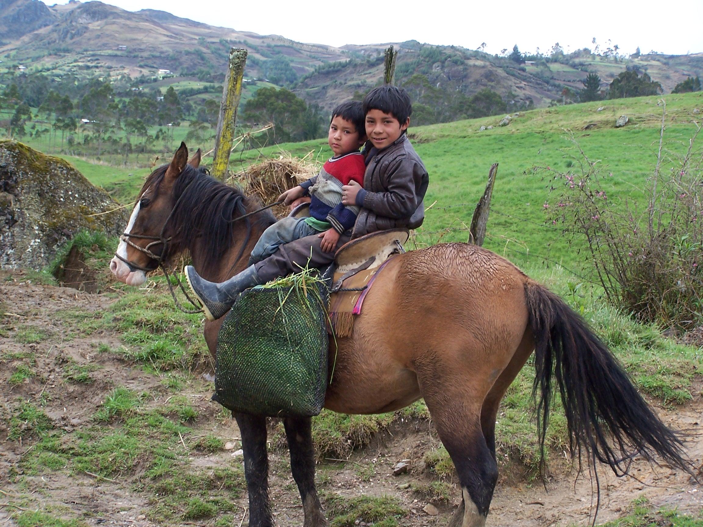 Niu00f1os peruanos recogiendo hierba